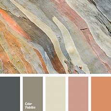 color palette 2442 color palette ideas