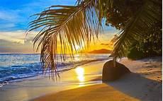 Malvorlagen Meer Und Strand Bilder Fotos Strand Meer Natur Palmengew 228 Chse 1920x1200