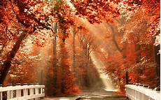 Fall Nature Computer Backgrounds