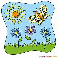 zyane clipart kostenlose bilder zum sommer
