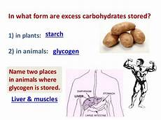 these are both storage polysaccharides and carbohydrates starches and glycogen form helices in