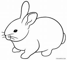 Hase Malvorlage Einfach Printable Rabbit Coloring Pages For