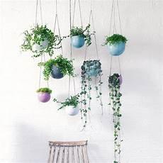 20 pots de fleurs suspendus et irr 233 sistibles