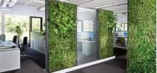 Office Green Walls