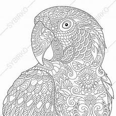 coloring pages for adults macaw parrot coloring