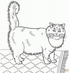 malvorlagen katzenbilder katzenbilder zum ausdrucken ausmalbild club