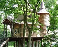 livable tree house plans elegant castle tree house plans new home plans design
