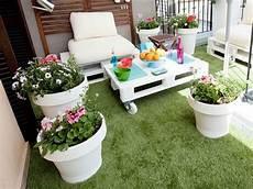 piante da terrazzo perenni come scegliere le piante da terrazzo