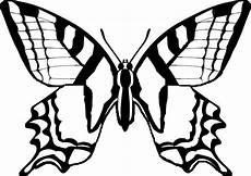 Ausmalbilder Schmetterling Pdf Kostenlos Schmetterling Malvorlage 07 Schmetterlingszeichnung