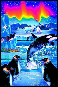 arctic blacklight reactive poster posters at