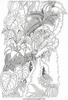 Malvorlagen Urwald Gratis Blumen 336 Gratis Malvorlage In Blumen Natur Ausmalen