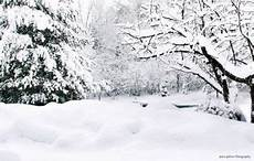 5x3ft 7x5ft 9x6ft Snow Snowflake Forest by 19 Ideas For Photography Landscape Snow Forests Winter