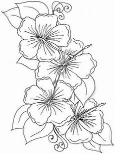 coloring pages hawaiian flowers collection free coloring