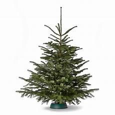 weihnachtsbaum online weihnachtsbaum 170 cm der gro 223 e karl meine tanne