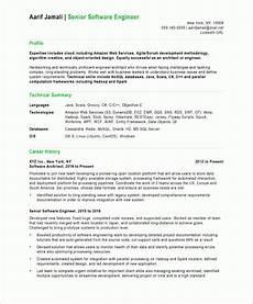 software developer free resume sles blue sky resumes
