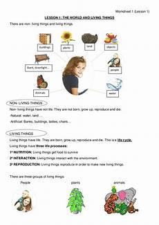 animals living things worksheets 14056 worksheet 1