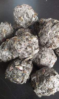 bombes de semences seed bombs made with newspaper pulp gardening