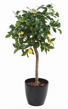 arbre fruitier en pot arbre artificiel fruitier citronnier t 234 te en pot