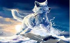 Cool Wolf Wallpapers