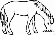 Malvorlage Pferd Gratis Grasendes Pferd Ausmalbild Malvorlage Tiere