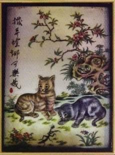 Orang Cina Suka Kucing Tak Kami Sayang Kucing