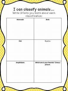 classification of animals worksheets for grade 3 14403 animal classification worksheet by the world in a classroom tpt