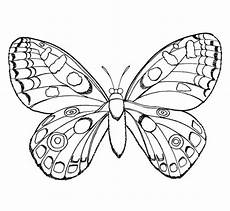 Malvorlagen Insekten Gratis Malvorlagen Zum Ausmalen Ausmalbilder Insekten Gratis 3