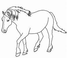ausmalbilder pferde haflinger kostenlose malvorlagen ideen