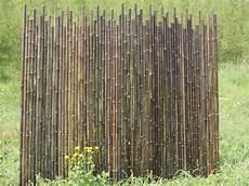 Cloture Bambou Noir Pivoine Etc