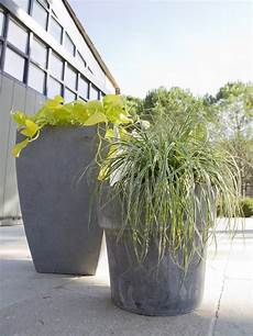 Des Pots Hauts En Fibre Aspect Ciment Design Pour Les