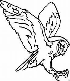 Malvorlagen Eule X Reader Herab Stuerzende Eule Ausmalbild Malvorlage Tiere