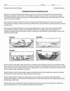 science worksheets ecosystem biology worksheet get now doc education items ecological