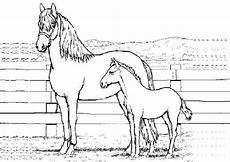 topmodel kleurplaat hoofd ausmalbilder kostenlos pferde 12