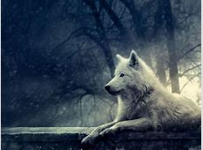 Dire Wolf Wallpapers   Wallpaper Cave