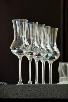 gin tasting bremen ᐅ gin tasting ratgeber privat selbst machen oder buchen