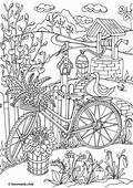 Country Spring – Bicycle  Coloring Printable Adult