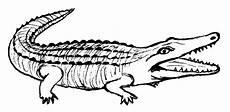 Malvorlage Kostenlos Krokodil Malvorlage Kostenlos Krokodil Kinder Zeichnen Und Ausmalen