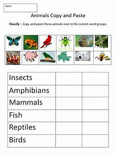 animals classification worksheets 13819 copy paste animal sjl plymouth tech page