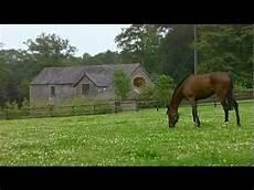 ffe trouver un cheval comment trouver un cheval sur la ffe la r 233 ponse est sur