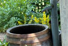 How To Save Water In Your Garden Flowers Org Uk