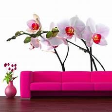 Wandtattoos Folies Wandtattoo Orchidee