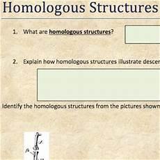 homologous structures 171 science class projects etc