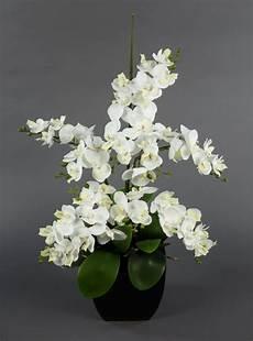 orchideen arrangement wei 223 im schwarzen dekotopf ja