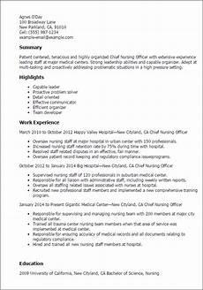1 chief nursing officer resume templates try them now myperfectresume