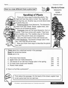 plants as producers worksheets 13617 results for plants worksheet guest the mailbox