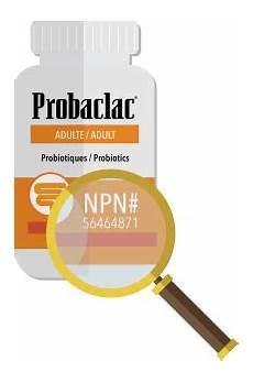 quel est le meilleur probiotique quel probiotique choisir