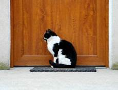 installer une chatière chati 232 re installation d une chati 232 re pratique fr