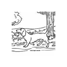 stundenplan vorlage hunde kostenlose ausmalbilder