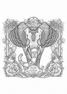 ausmalbilder f 252 r erwachsene elefant best ausmabilder 2020