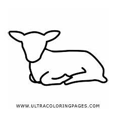 Ausmalbilder Ostern Lamm Lamm Ausmalbilder Ultra Coloring Pages